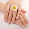 Kosmeetika - Käte- ja küüntehooldus